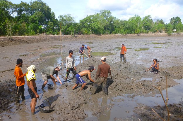Villagers and MAP intern work on creating a channel to help the water drain properly from the abandoned shrimp pond.