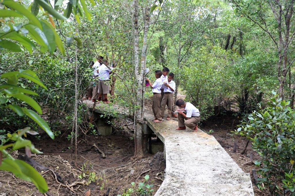 Students from the area enjoying the new nature trail