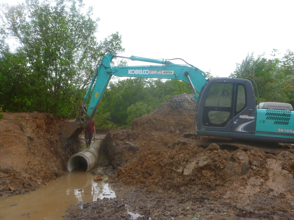 The backhoe allow the seeds to come in the shrimp pond