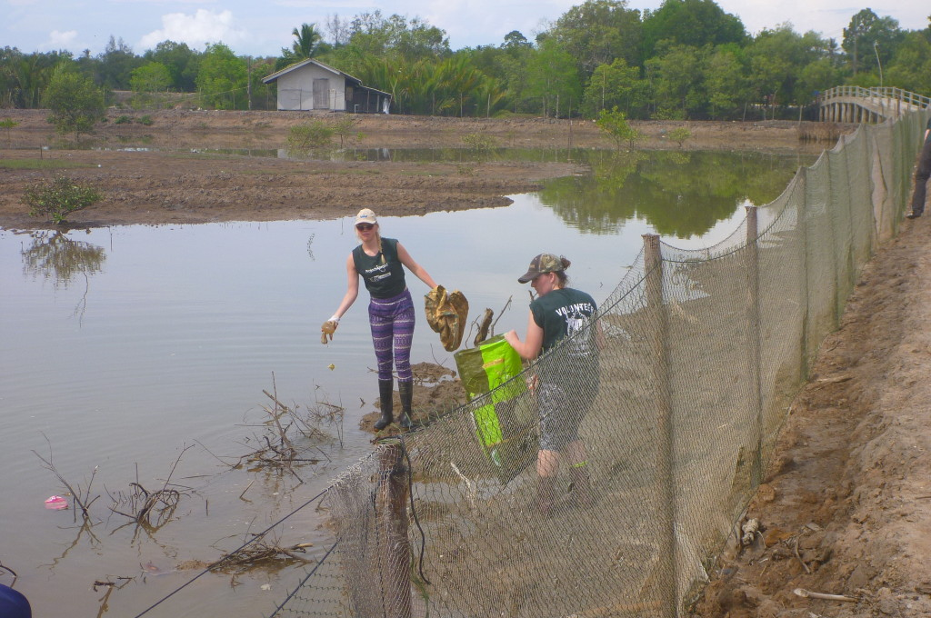 Removing trash and debris that has accrued in the pond do to a damaged net over the water flow entrance.