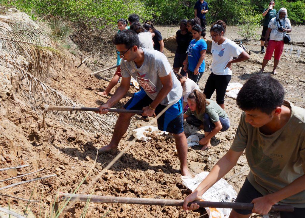Volunteer students at work